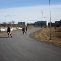 Ulkoluistelukauden ruskeajoutsenet aloittavat jo hyvissä ajoin ennen lumien sulamista.